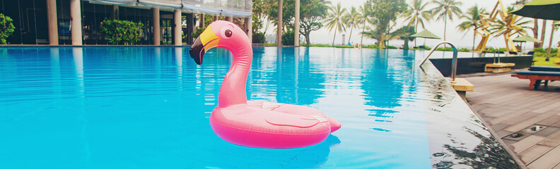 Printed roller blinds Flamingo Circle in a flamingo pool. Selective focus.