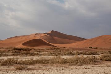 Keuken foto achterwand Zandwoestijn Sand Dunes In A Desert