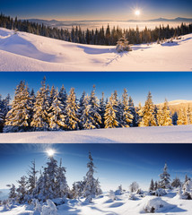 Wall Mural - Winter collection of 3 panoramic images. Christmas background.