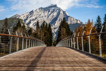 footbridge leading to mount cascade, banff national park, alberta, canada Wall mural