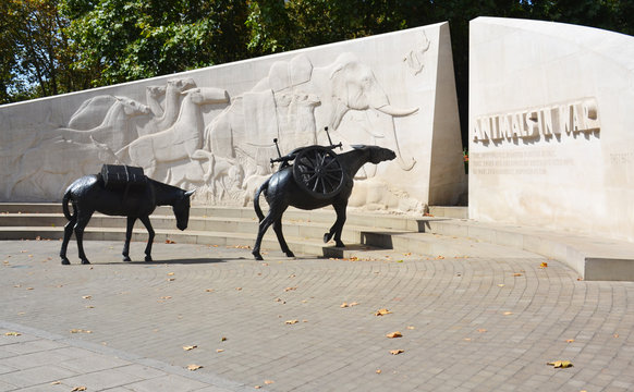 London, UK - August 29, 2019: The Animals in War memorial in Park Lane, London The memorial is dedicated to the animals that served and died under British military command throughout history.