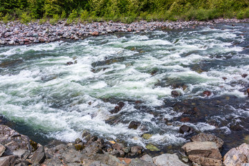 Wall Mural - Majestic mountain river in Vancouver, Canada.