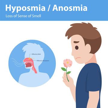 Hyposmia Anosmia, Loss of Sense of Smell Info graphic elements the signs of corona virus Symptoms , Health care concept