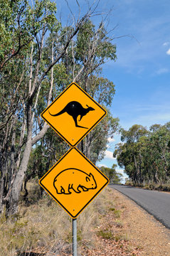 A yellow road sign on the way to Abercrombie Caves