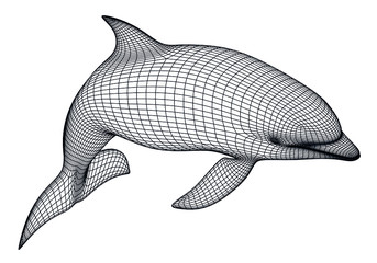 Dolphin polygonal lines illustration. Abstract vector dolphin on the white background Wall mural