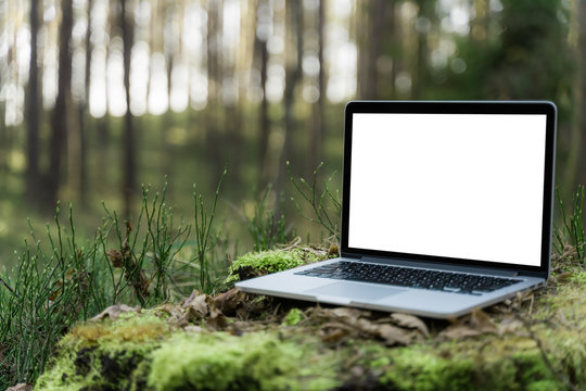 Laptop outside concept. Empty copy space, blank screen mockup. Soft focus laptop in nature background. Ecology travel and work outside office concept.