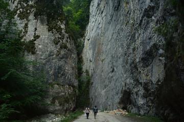Poster Europe de l Est Rear View Of People Walking Towards Rock Formation In Forest
