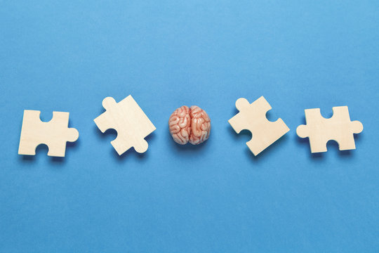 Human brain with a puzzle on blue background. Business idea, memory loss, training and new skills.