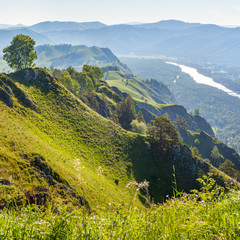 Fototapete - View of the valley and the Katun River from the mountain, Altay. Spring view.