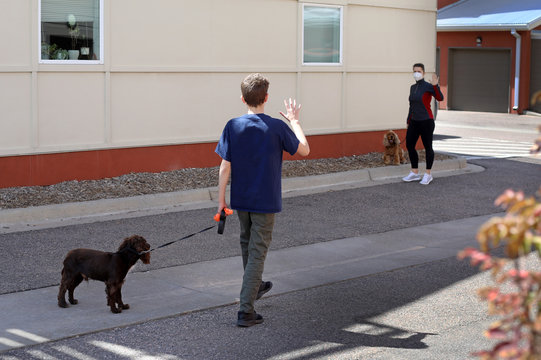During the Coronavirus quarantine neighbors walking their pets greet each other keeping the social distance