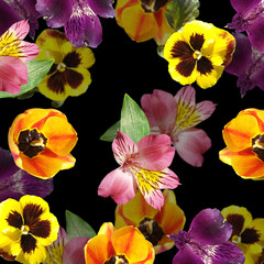 Wall Mural - Beautiful floral background of tulips, alstroemeria and pansies. Isolated