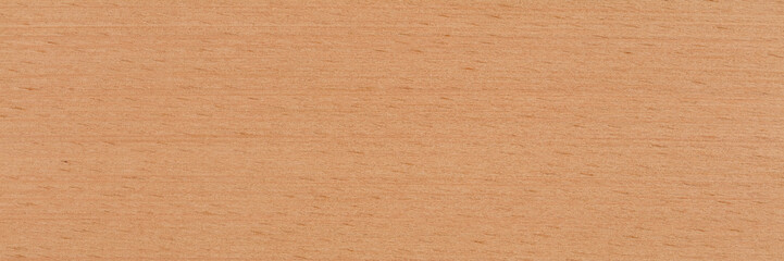 Natural beech veneer background in warm beige color. Natural wood texture, pattern of a long veneer sheet, plank.