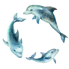 Dolphins with cub, joyful family on a white background, hand drawn watercolor.