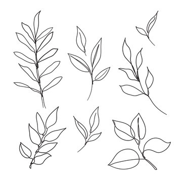 Set of leaves continuous line drawing art. Abstract minimal botanical art.