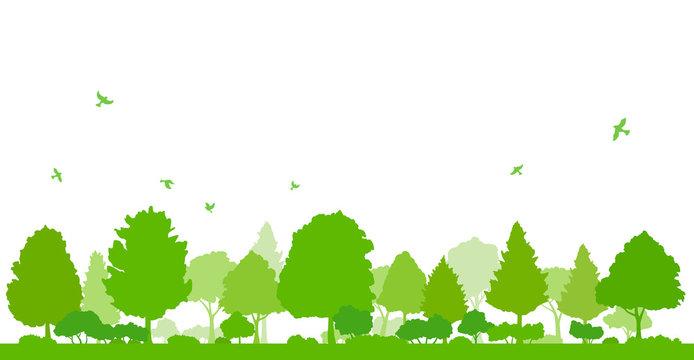木々と飛ぶ鳥の風景