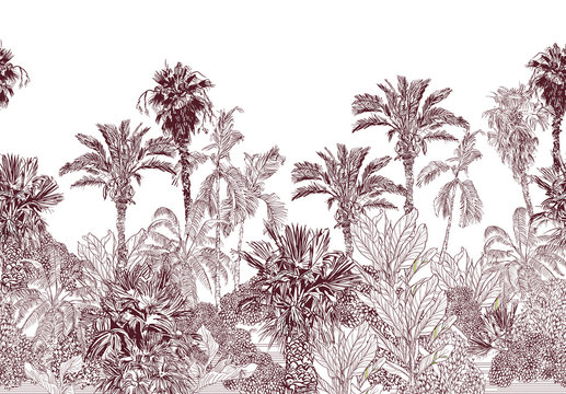 Seamless Border Vintage Etching Tropical Jungle Pattern, Toile Tropics Wallpaper Design, High End Palms Brown on White Background