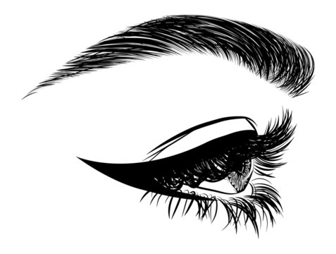Illustration with side view of woman's eye, eyelashes and eyebrow. Makeup Look. Tattoo design. Logo for brow bar or lash salon.