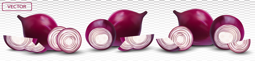 Red onion. Half, piece onion on transparent background. 3d realistic onion. Vector illustration. Wall mural
