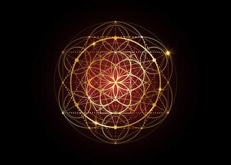 Seed of life symbol Sacred Geometry.  Geometric mystic mandala of alchemy esoteric Flower of Life. Gold luxury design, vector divine meditative amulet isolated on black background Fototapete