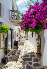 Picturesque narrow street with traditional whitewashed houses with blooming bougainvillea flowers of Naousa town in famous tourist attraction Paros island, Greece