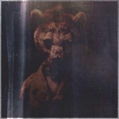 Obraz Person Wearing Wolf Mask - fototapety do salonu