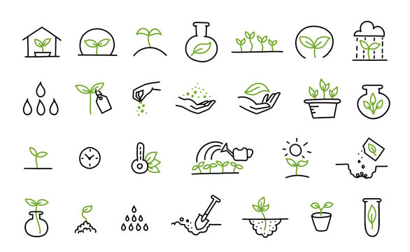 Set of growing seedlings icons. Plant shoots. Agriculture technology. Vector line hand-drawn sketch.