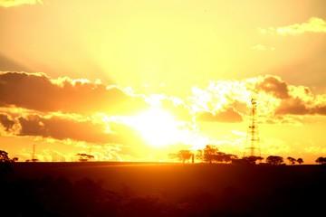 Foto auf Gartenposter Gelb Schwefelsäure Silhouette Tree On Landscape Against Sky At Sunset