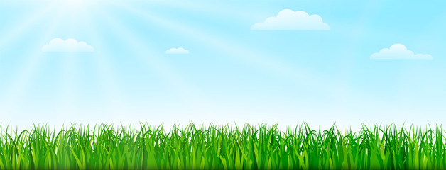 Spring nature background with green grass and blue sky. Vector illustration