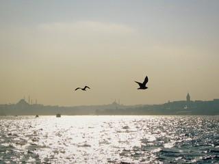 Foto auf Leinwand Rosa hell Silhouette Birds Flying Over Sea Against Sky