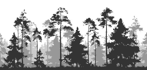 Wall Mural - horizontal seamless vector illustration. Pine forest with deer and birds