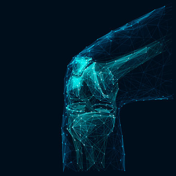 Human knee low poly wireframe vector illustration. Polygonal body part isolated on dark blue background. Bone joint 3d mesh art with connected dots. Futuristic medicine, orthopedic treatment concept