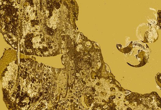 Golden textured background