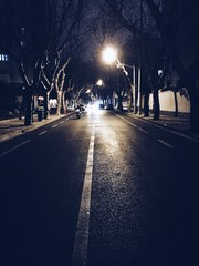 Fototapeta View Of Road Amidst Trees At Night