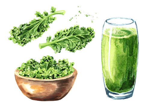 Kale Juice smoothie  with Curly Kale leaf set. Watercolor hand drawn illustration, isolated on white background