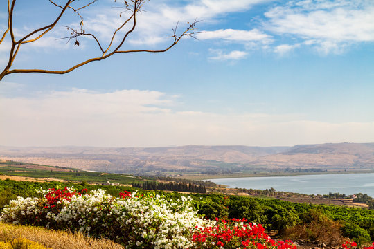 Looking down from the Mount of Beatitudes to the Sea of Galilee