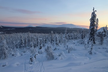 Winter landscape with snow covered trees and mountians in Finnish Lappland