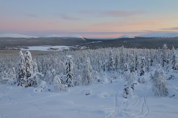 View over a snowy landscape in Finland