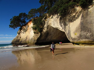 Printed roller blinds Cathedral Cove isolated beach , Cathedral Cove, Auckland, Coromandel.