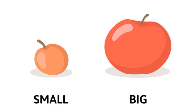 Words small and big opposites flashcard with red apples. Opposite adjectives explanation card. Flat vector illustration, isolated on white background.
