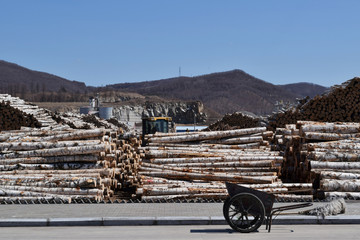 Logs are seen at a wood factory in Suifenhe