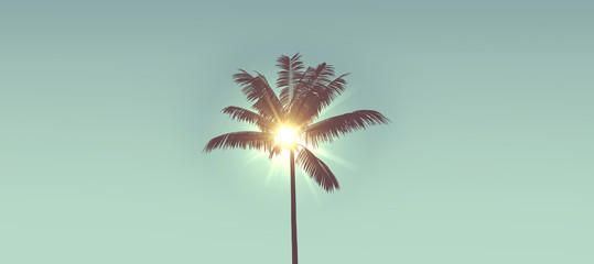 Tropical palm tree silhouette against bright sunlight. 3d rendering Wall mural