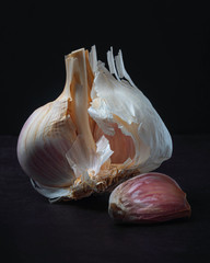 Majestic Garlic on Dark Background Still Life