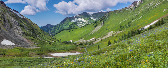Wall Mural - Beautiful mountain valley, snow and greens on the slopes, spring in the mountains, Altay. Panoramic view.