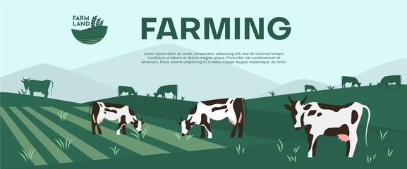 Cows farming on green meadow agricultural business concept. Fotomurales