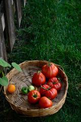 Homegrown fresh heirloom tomatoes