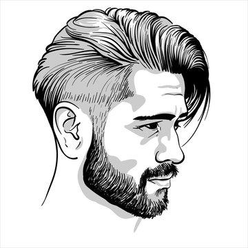 Bearded stylish man portrait. Illustration. Vector