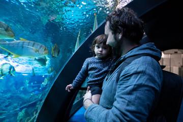 Fototapeta father and daughter looking at fish at the aquarium