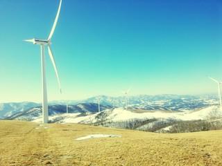 Fototapeta Wind Turbines In Field
