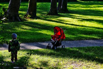 Papiers peints Vert chaux Rear View Of Kid Standing By Baby Carriage In Park