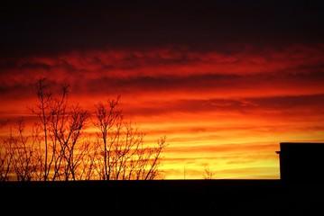 Foto auf Gartenposter Violett rot Silhouette Of Landscape Against Cloudy Sky